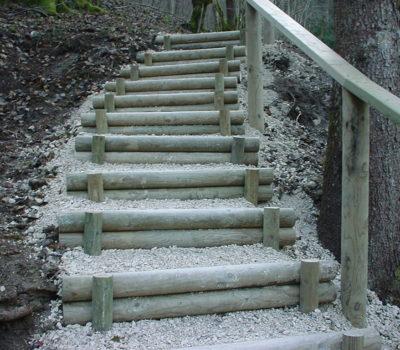 escaliers en rondins